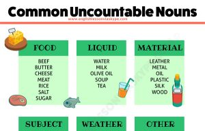 Uncountable and Plural Nouns – Study English Grammar Rules