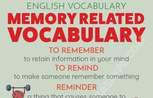 Memory Related Vocabulary