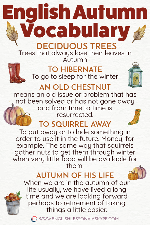 English Phrases and Idioms connected with Autumn #learnenglish #englishlessons #englishteacher #ingles #englishvocabulary #aprenderingles