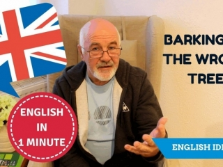 Learn English idioms: Barking up the wrong tree