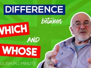 Learn English Grammar basic rules - difference between WHICH and WHOSE