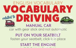 English Vocabulary related to Driving