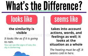 Difference between SEEM, LOOK and APPEAR