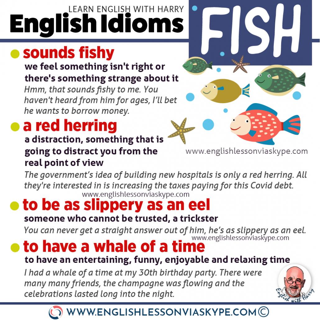 English fish idioms and phrases. Advanced English learning. Advanced English lessons at www.englishlessonviaskype.com #learnenglish #englishlessons