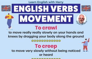 Read more about the article Verbs Of Movement In English